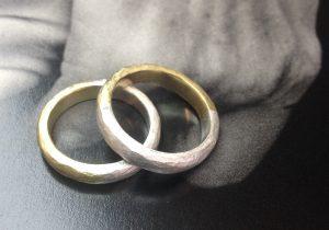 2 Ringe bicolor